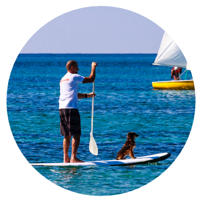 http://www.eolowindsurf.com/eolosardinia/wp-content/uploads/2019/02/icon-sup.png